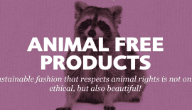 Animal Free Products