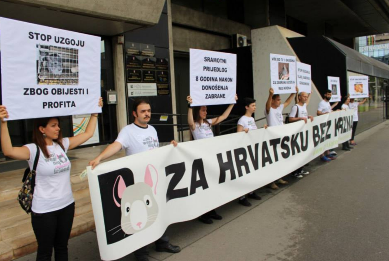 Chinchilla fur ban Croatia