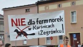 Protest mink farm plan Poland