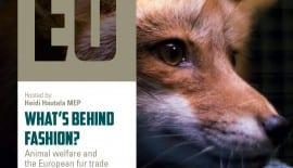 DEF Fur free A4II