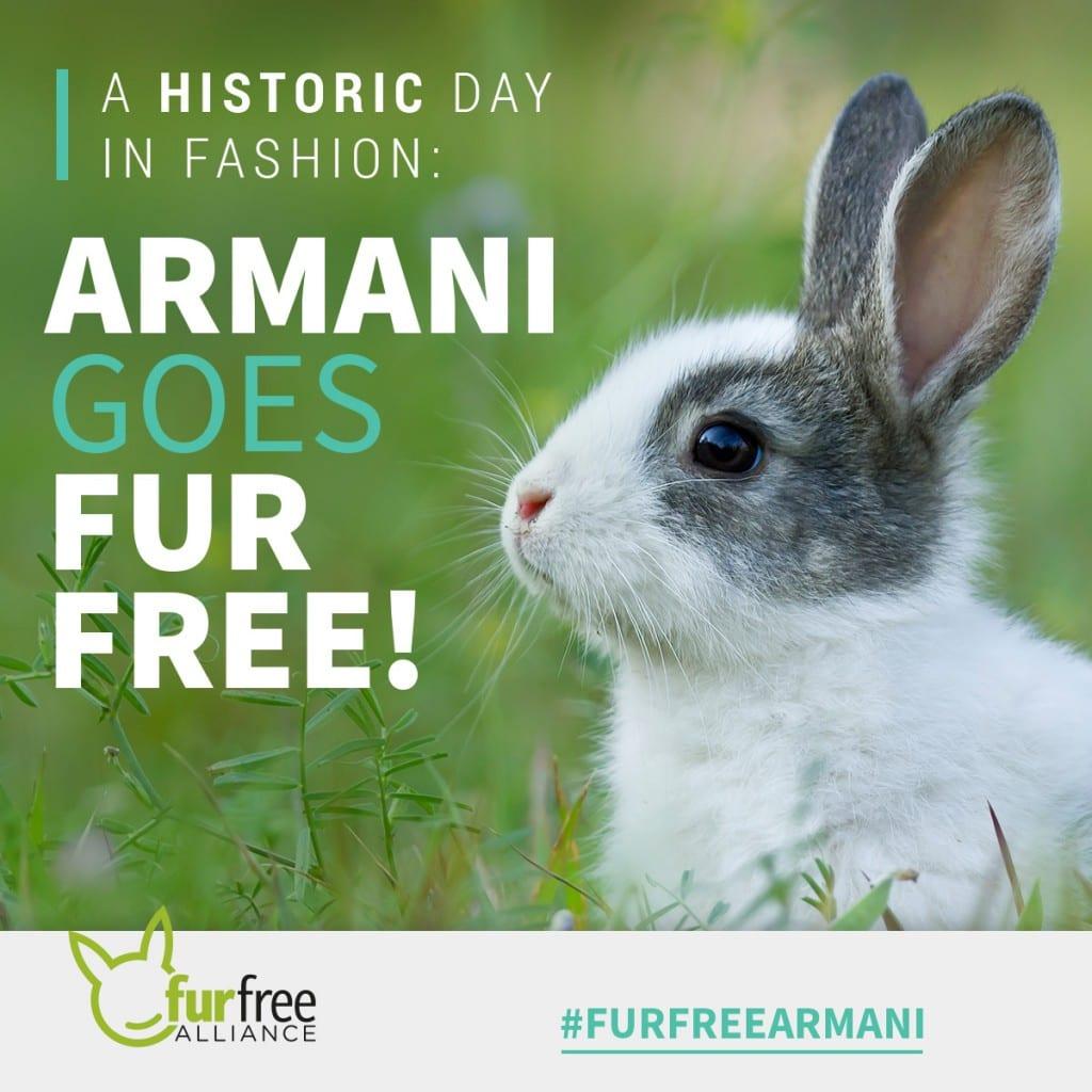 Armani fur free