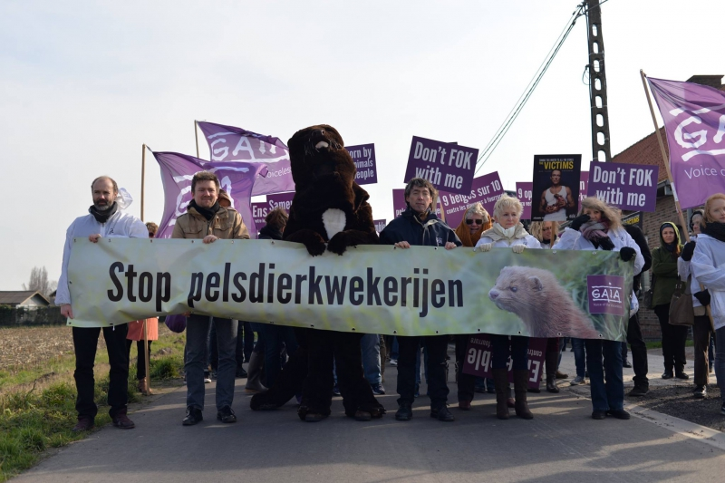 Fur farm in Flanders shuts down
