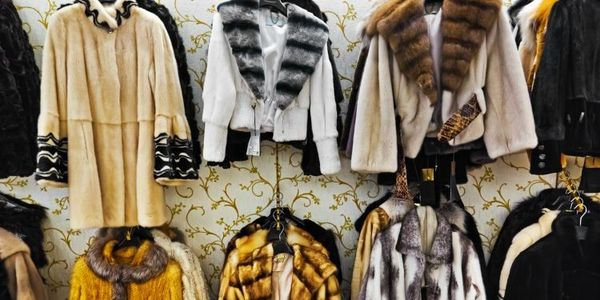 Israel ban on fur sales