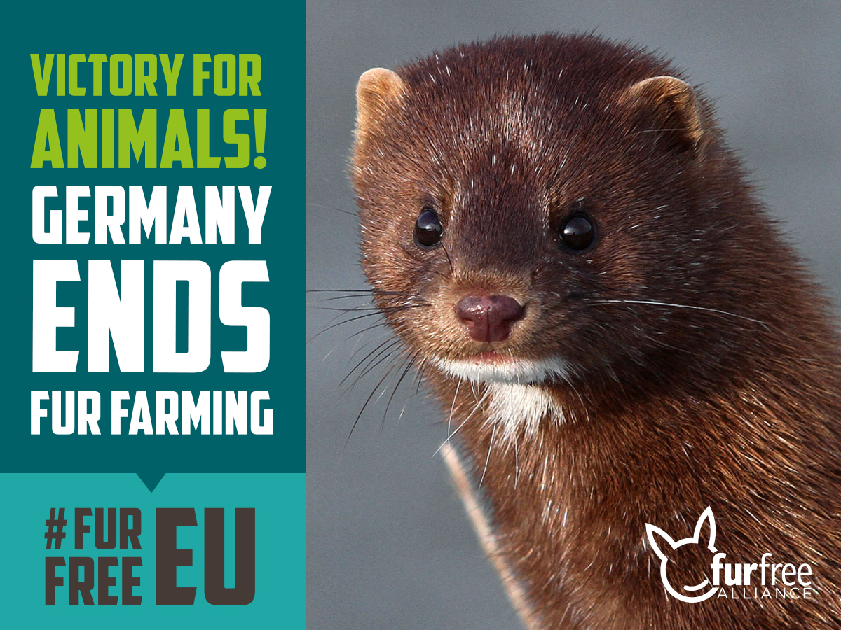 Germany ends fur farming