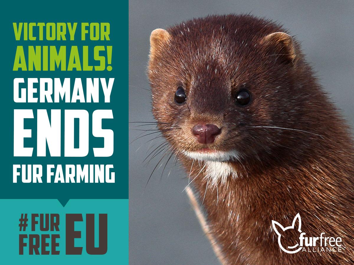 Germany ends fur farming