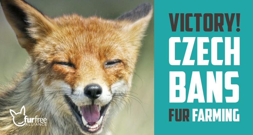 Czech bans fur farming